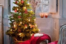Christmas Decor / by Lana McHolland