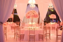 Pink, Blush, & Fuschia Weddings / by Events Beyond {Event Designer & Planner}