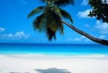 Just Beachy / by Carol Wiglesworth
