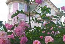 Pink! / by Bilinda Ricketson