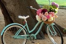 Bicycles / by Bilinda Ricketson