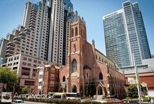 St. Patrick Catholic Church, Mission St., San Francisco / by Tara Arrowood Pynn