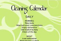 Cleaning Tips / by Jennifer Gross