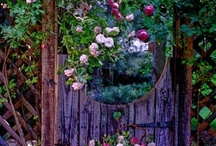 Just Outside My Door... / Porches, yards, gardens, forests, glens, landscapes-anywhere outside that is beautiful! / by Cindy Pickering