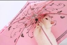 Parasols and Purses~ / by Janet's Creative Cottage
