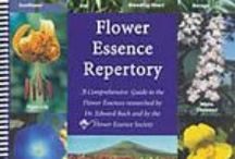 Flower Essences / Flower essences can be a powerful source of healing, especially for behavior and self development; they work for adults, children, infants and pets and they are safe, inexpensive, and effective  often when other modalities are not. / by Marilyn Pabon