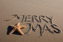 Holiday Ideas / by Jennifer Arnold,