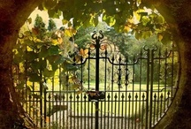 Doors and gates / by Donna Birchell