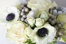 Wedding / by Jennifer DeLozier