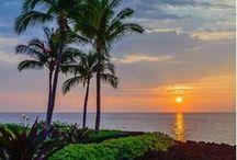 Hawaii  / by Brenda Wester