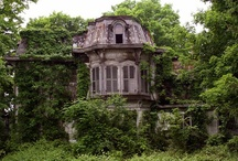 Abandoned, but lovely / by Susan Taylor