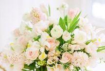 Bring me Flowers / by ・ kei