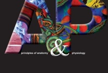 Human Anatomy & Physiology / by Crystal Whitten