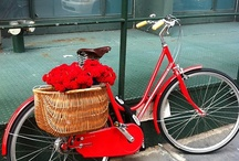 basketsnbikes / by Francie Erickson