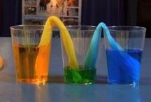Preschool Mania:Science / by Erin Mendoza