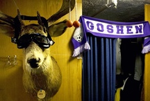 Dorm Ideas / Ideas to spruce up that bland dorm room / by GOSHEN COLLEGE