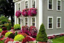 Dream House / by Julia Mayott