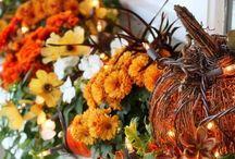Happy fall y'all! / by Kaylea Kaaihili
