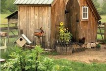 Chicken coops / by Linda Davis