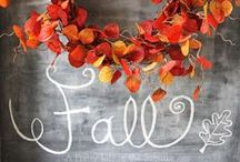 Autumn Ornaments & More / Get your Fall inspiration and holiday decorating ideas with these ornaments! / by Ornaments and More