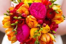 Bouquets / by Bellus Designs