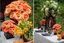 Fall Wedding / by Bellus Designs