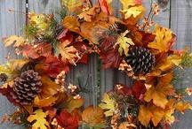 Fall, Autumn & Halloween / by Bellus Designs