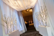 Winter wedding  / Winter Wedding Inspiration / by Bellus Designs