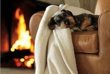 """""""W"""" is for Warmth&Cozy ⁂ / by Tania Nimpha"""