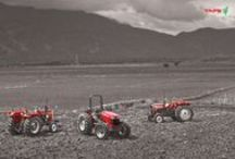 Wallpapers / TAFE - Tractors and Farm Equipment Limited | A US $1.6 bn company | World's third largest manufacturer of tractors | Second largest tractor manufacturer in India | Exports to over 77 countries. / by TAFE - Tractors and Farm Equipment Limited