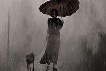 Weather / by Lisa LaBute