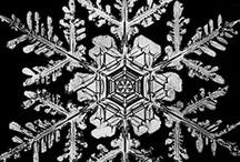 Snowflakes / by Summer Ann