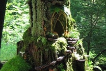 Small home fantasy / by Michelle Celeste Saxey