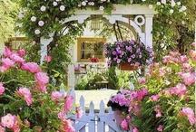 garden show / by Marilyn