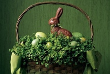 Easter bunny / by Marilyn