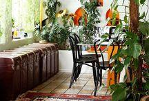 Home Decor / by Lindsay Stobinski