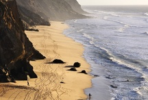 sun.sand.sea ~ / by Loretta Cohen