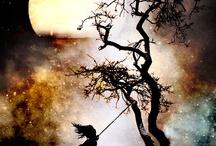 Trees / by Kristy Fullmer