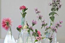 Floral Design Inspiration / by Maria Gunn