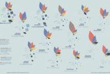 Data | Information Graphics / by Tiffany Farrant-Gonzalez