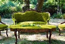 { garden } / ~ outsidey stuff ~ / by Rachael Cederberg