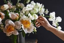 Flowers & Bouquet Things / by Megan Pierson