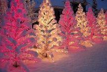 Christmas<3 / by Savannah Molina
