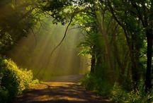 West Virginia  / I love wv / by Kimberly Hoffman