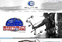 Web Design Work / by Scales Advertising