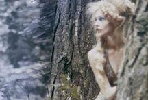 mood: wonderland / by Faith Rudd Trimmer