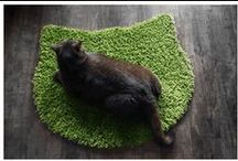 Modern Feline / Modern products for your feline companion - design ideas, home catification and products / by Caleb Boulier