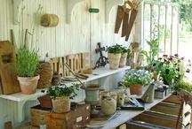 Gardening / by Theresa