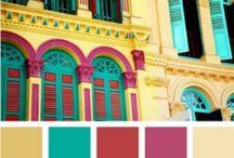Color Palettes / by Elise Gottlieb