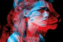 Digital art/mixed media / by Margaret Doyle